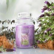 lavender large jar candle on table image number 1