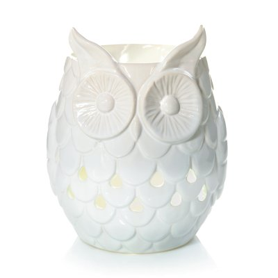 Owl w/ LED and Timer