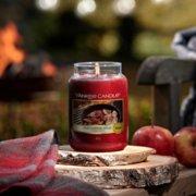 Crisp Campfire Apples image number 2