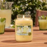 Homemade Herb Lemonade image number 2