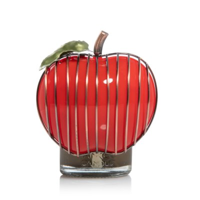Bronze Wire Apple with Light