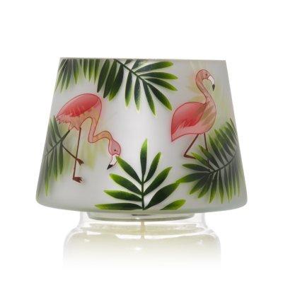 Paradise Flamingo