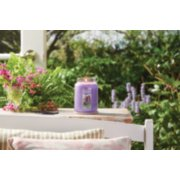 lilac blossoms large jar candle on table image number 4