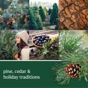 balsam and cedar holiday car fragrances banner image number 1