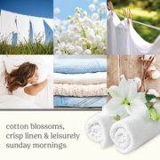 clean cotton white candles banner image number 1