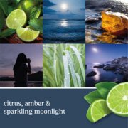 moonlit cove candle image number 1