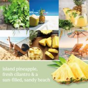 island pineapple, fresh cilantro and a sun-filled, sandy beach image number 2