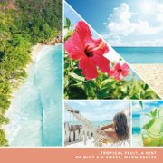 tropical fruit, a hint of mint and a sweet warm breeze text on photo collage with beaches and hammock image number 3