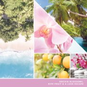 orchid blossoms, ripe fruit, and a lush escape text on photo collage with palm trees and beach image number 2