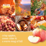 photo collage with apples and text that reads crisp apples, sweet cider and a warm mug of fall image number 1