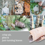 photo collage with forest and text that reads crisp air, pine and just-turning leaves image number 1