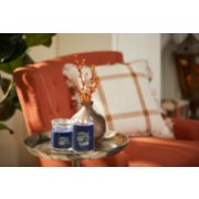 lakefront lodge signature large and medium jar candles on tray in living room image number 3