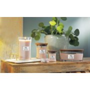 vanilla and sea salt large medium mini jar candles and petite candle and ellipse candle on table image number 3