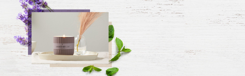 lavender mint leaf minimalist collection medium jar candle