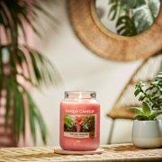 the last paradise large jar candle image number 1
